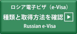 ロシア電子ビザ 種類と取得方法を確認